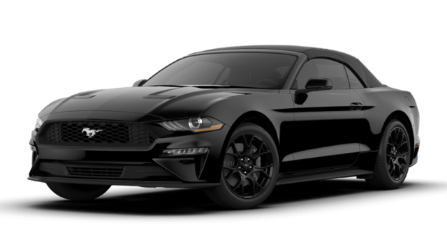 New 2019 Ford Mustang For Sale at Performance Ford of East Hanover | VIN:  1FATP8UH5K5190915